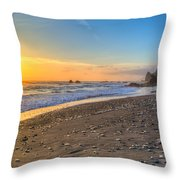 Beach Of Velella Throw Pillow