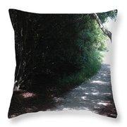 Beach Path Throw Pillow