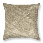 Beach Prints Throw Pillow