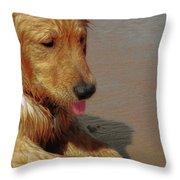 Beach Pup Throw Pillow