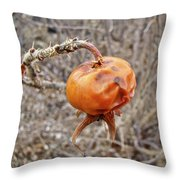 Beach Rose Hip - Rosa Rugosa Throw Pillow