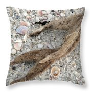 Beach Scape Throw Pillow