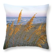 Beach Scene With Sea Oats Throw Pillow by Steve Winter