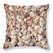 Beach Seashells Throw Pillow