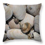 Beach Still Life Throw Pillow