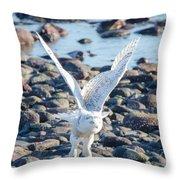 Beach Take Off Throw Pillow