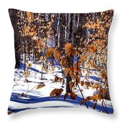 Beach Tree's In Winter Throw Pillow