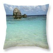 Beach With Big Rock Ahead Vertical Bermuda Throw Pillow