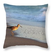 Beachcomer Throw Pillow