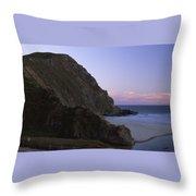 Beached Dragon Throw Pillow