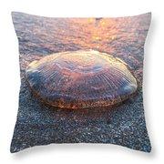 Beached Jellyfish Throw Pillow