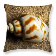 Beached Shell Throw Pillow