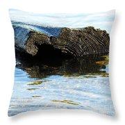 Beached Tree Throw Pillow