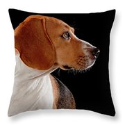 Beagle Throw Pillow