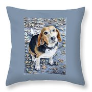 Beagle Nanni Throw Pillow