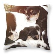 Beagle Pile Throw Pillow