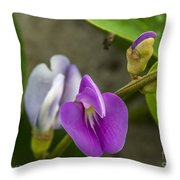 Beaked Butterfly Pea 9 Throw Pillow