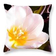 Beaming With Life Throw Pillow