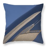 Bean Reflection Throw Pillow