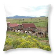 Bear Basin Ranch Throw Pillow