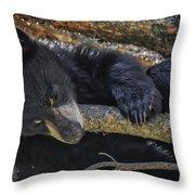 Bear Cub 2 Throw Pillow