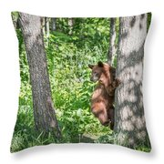 Bear Cub Climb Throw Pillow