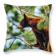 Bear Cub In A Tree 3 Throw Pillow