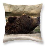 Bear Dip Throw Pillow