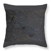 Bear Flurries Throw Pillow