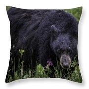 Bear Gaze Throw Pillow