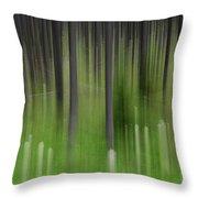 Bear Grass And Lodgepoles Throw Pillow