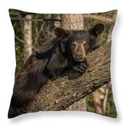 Bear In Tree Throw Pillow