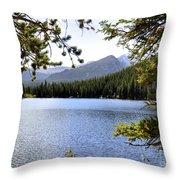 Bear Lake Rmnp Throw Pillow