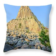 Bear Lodge Throw Pillow