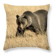 Bear On The Prowl Throw Pillow