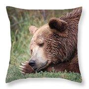 Bear Sleeping Throw Pillow
