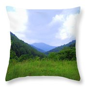 Bear Wallow Throw Pillow