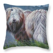 Bearded Collie In Field Throw Pillow