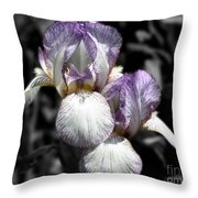 Bearded Irises Partial Color Throw Pillow