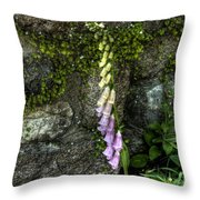 Bearded Ones Throw Pillow