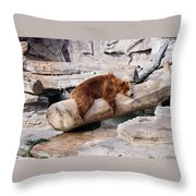 Bearly Relaxing Throw Pillow