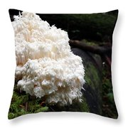 Bear's Head Tooth Of The Forest Throw Pillow