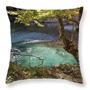 Beatiful Morning Throw Pillow