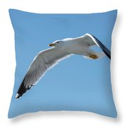 Beating Of Wings Throw Pillow