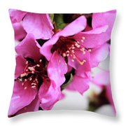 Beauties In The Rain Throw Pillow