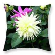 Beautiful And Fresh Dahlias In The Butchrt  Gardens,vancouver Island 2. Throw Pillow