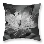 Beautiful Anyway Throw Pillow