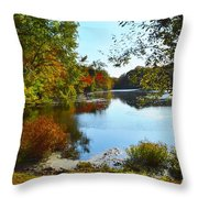 Willow Pond, Caleb Smith Preserve Throw Pillow