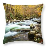 Beautiful Autumn Colors Little Pigeon River Smoky Mountains Throw Pillow