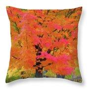 Beautiful Autumn Day Throw Pillow